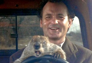 Phil Connors, plus groundhog, on Groundhog Day.
